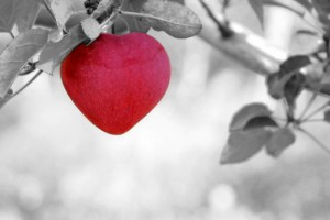 apple-heart-b&w-with-color-960_720