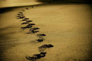 golden-sand-960_720